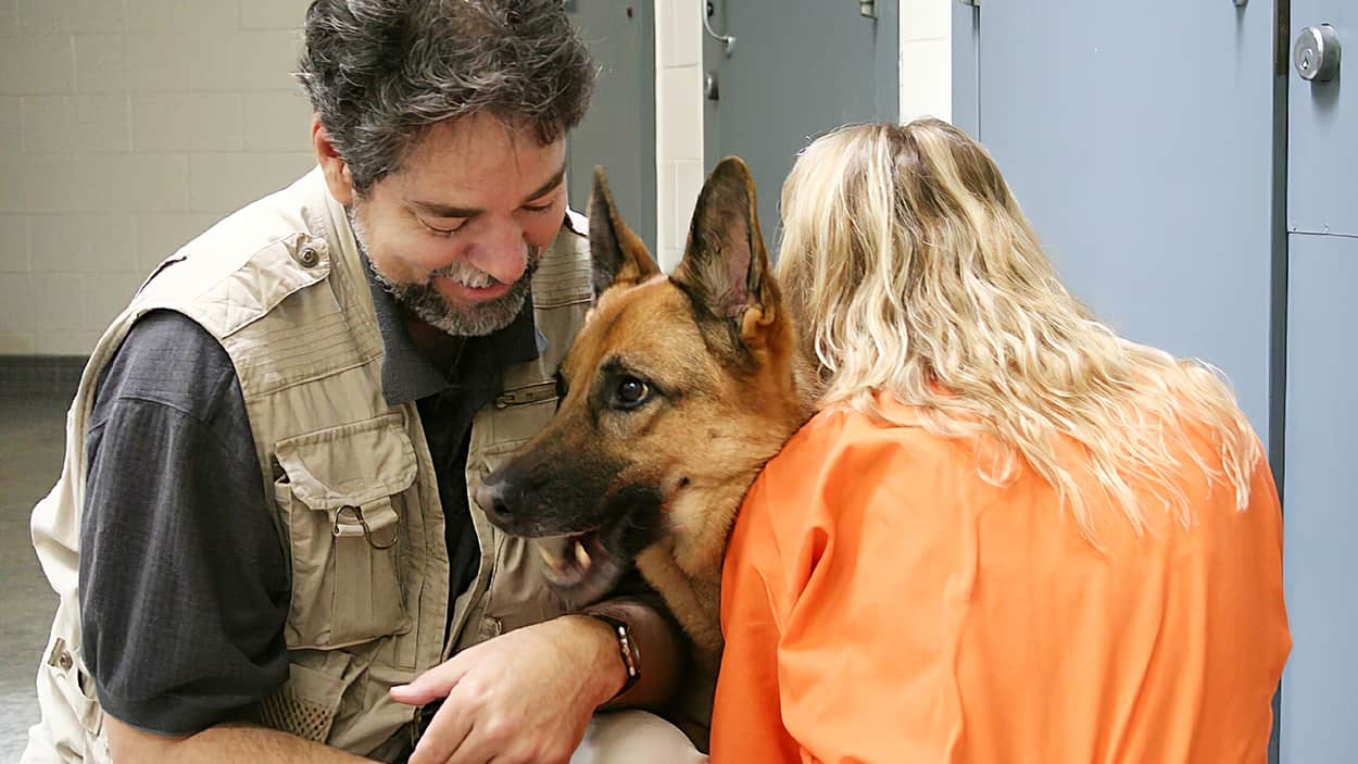 Dallas Area Service Dogs & Ministry for At-Risk and
